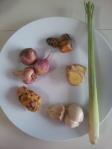 Ingredients for Rendang